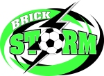Brick Storm-logo